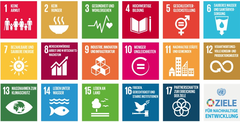 Die Sustainable Development Goals (SDGs)
